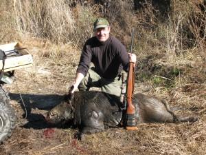 swine 005