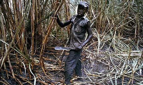 Sugar worker