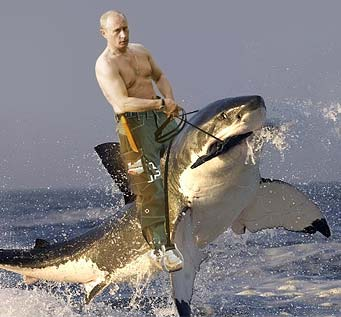 putin-bare-riding-shark-341x317