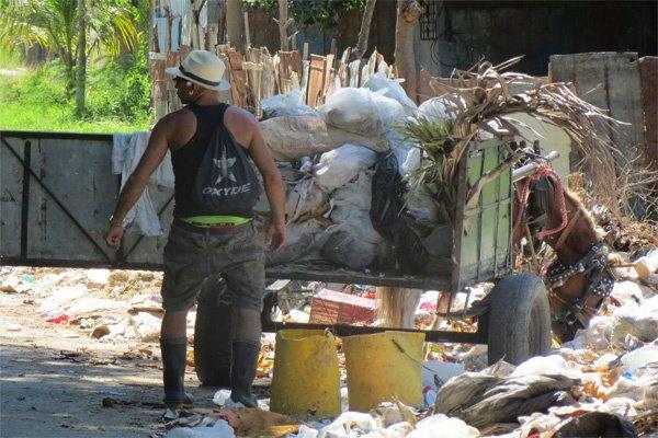 trabajador-de-comunales-cargado-de-basura-para-vertir